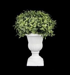 Classic Urn Potted Greenery