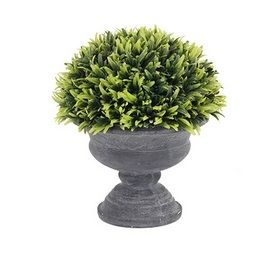 Squat Urn Potted Greenery