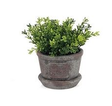 Small Cylinder Potted Greenery