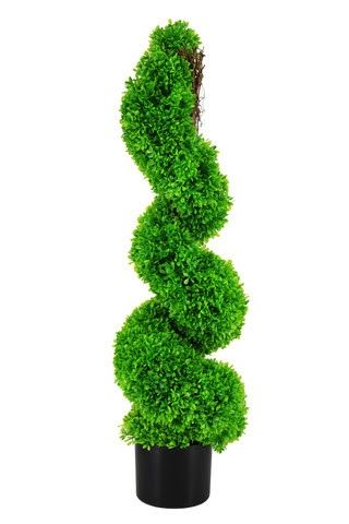 Topiary Boxwood Spiral Tree