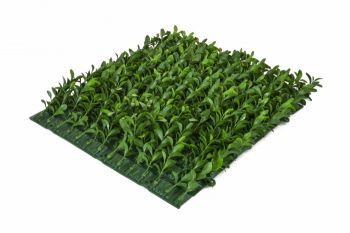 Buxus UV Side Mat Panel