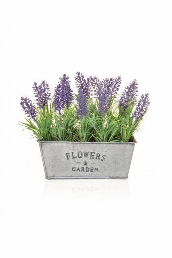 Lavender Display is Metal Trough