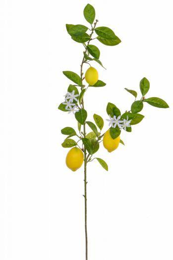 Lemon Foliage Spray with Fruit