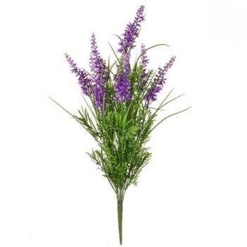 Grass Mix Plant FR