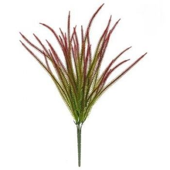 Red Tipped Grass FR