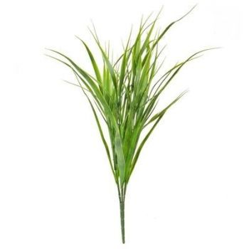 Sword Grass UV