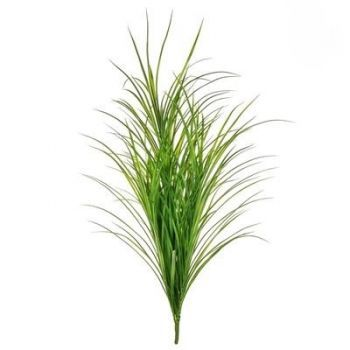 Large Grass Bush FR