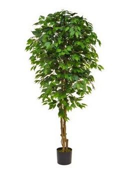 Artificial Silk Ficus Tree Just Artificial