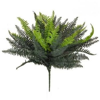 Boston Bush Fern UV FR