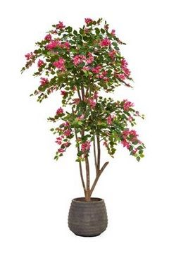 Flowering Bougainvillea Tree in Taupe Pot