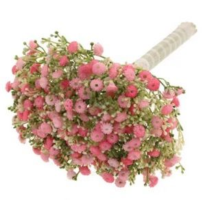 Million Star Gypsophila Bundle