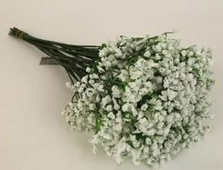 Gypsophillia Bundle 12 Stems
