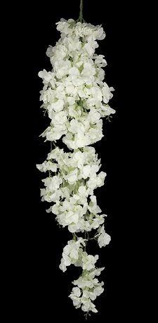 Hanging Blossom