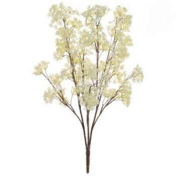 Blossom Spray FR