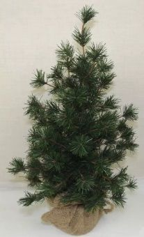 Vienna Spruce Christmas Tree