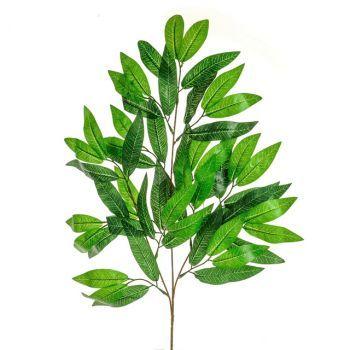 Bay Leaf Spray