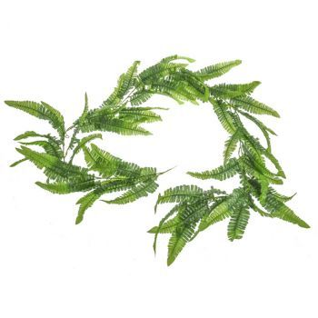 Boston Fern Garland