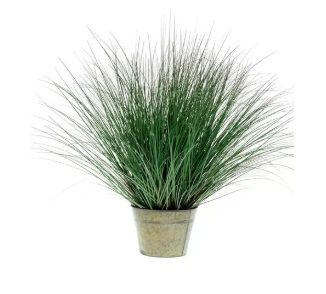 Wild Grass in Zinc Pot
