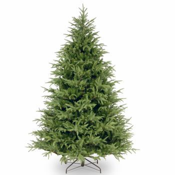 Luxury Frasier Grande Christmas Trees