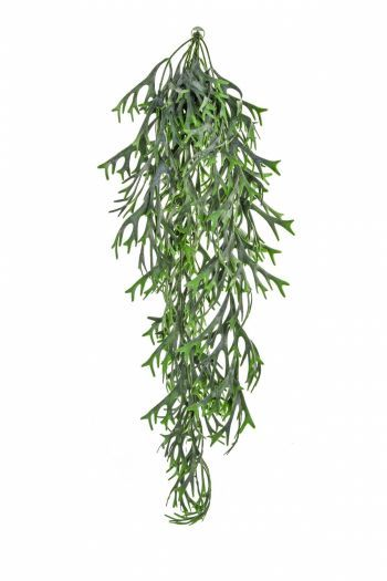 Artificial Staghorn Hanging Trail UV FR