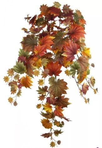 Maple Leaf Hanging Bush