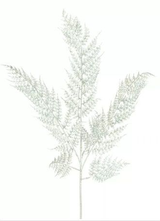 Glittered Leather Fern