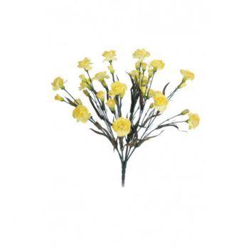 Carnation Bush