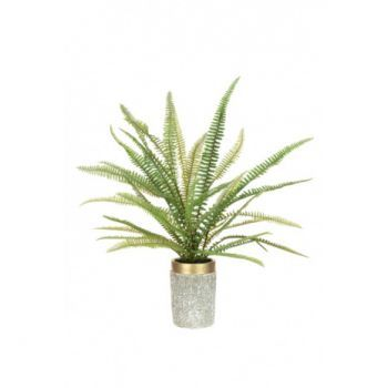 Large Fern in Gold Top Planter