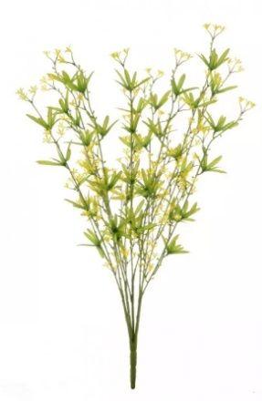Wild Lily Bush