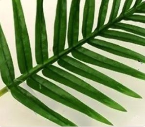 Fern Palm Leaf Spray