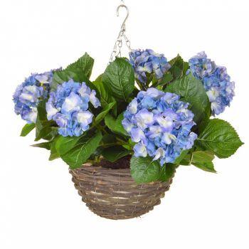 Hydrangea Hanging Basket