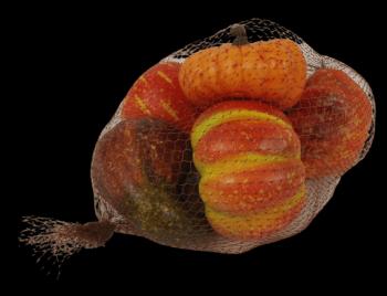 Pumpkin Mixed in net 6 Pieces