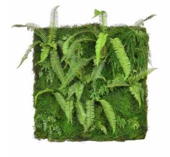 Green Wall Fern Mat