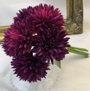 Spiky Chrysanthemum, 6 Flowers