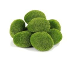 Moss Rocks (8 Piece)