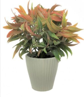 Autumn Leaf In Ribbed Pot