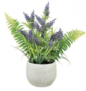 Country Lavender & Fern In Rustic Pot