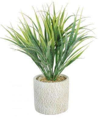 Grass Spray In Pot Display