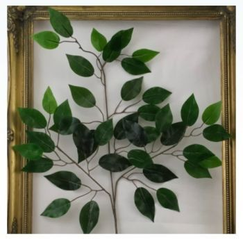 Ficus Branch Real Touch
