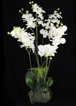 Moss Bag Orchid Arrangement