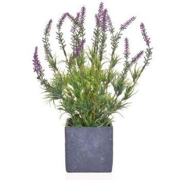 Lavender in a Slate Pot