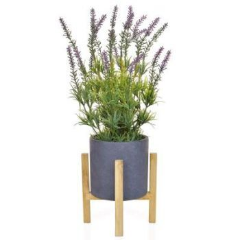 Lavender in a Slate Pot on a Stand