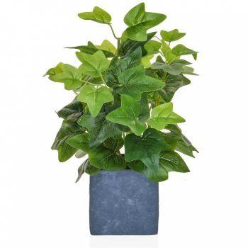 Ivy Spray in Slate Pot