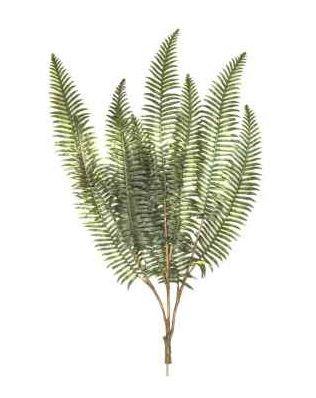 Fern Leaf Branch 10 Pack