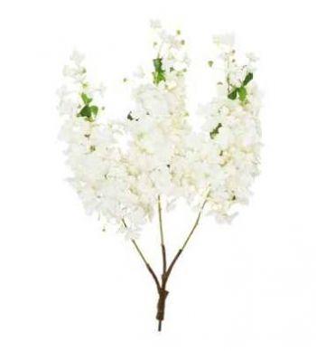 Hydrangea Branch