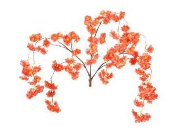 Red Hanging Cherry Blossom Branch