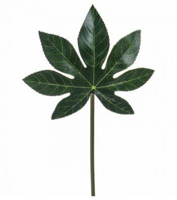 Aralia Leaf x4