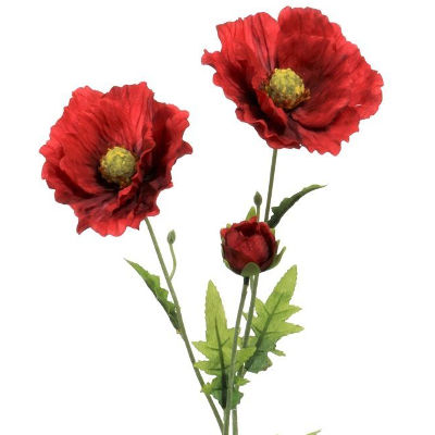 Artificial silk flowers huge choice great prices poppies mightylinksfo